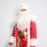 Дед Мороз (vip)