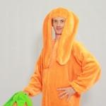 Оранжевый заяц