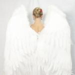Крылья белые